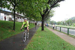 Popular Cycling Tracks in Sydney